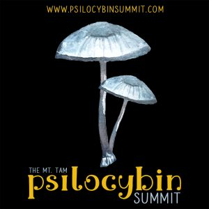 Psilocybin Summit 2020 Psychedelic Medicine Depression Death Anxiety