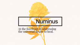 Numinus Publicly Traded Psychedelic Stock